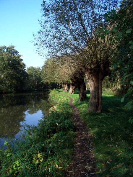 Part of the tow path near Guildford