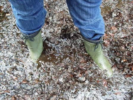 My trusty fleece lined wellingtons